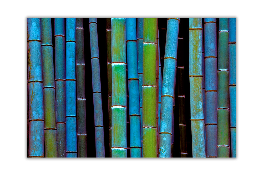 Blue Bamboo Forest Floral Poster Wall Art Prints Home Décor Pictures
